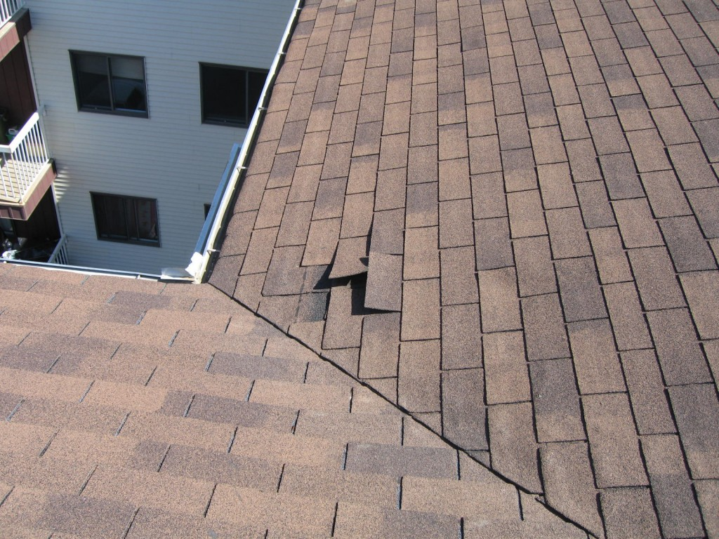 Shingles not fix down on main roof area