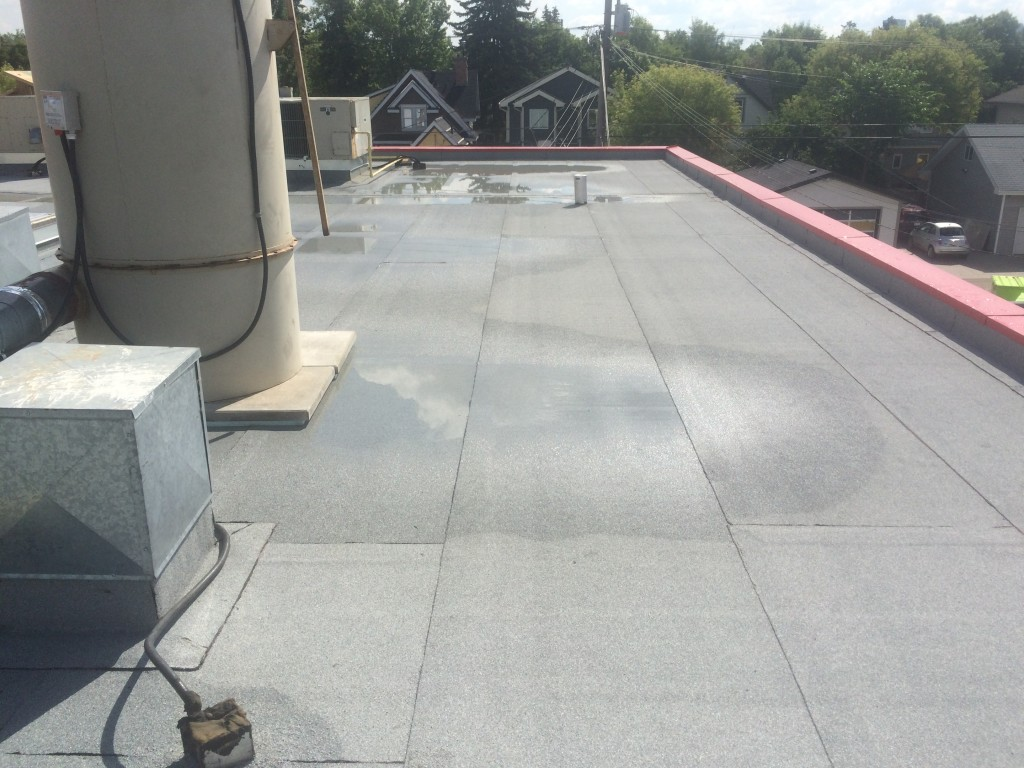 flat roof repair options in Edmonton