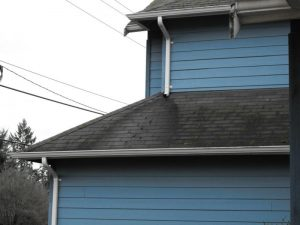 Black shingle stain
